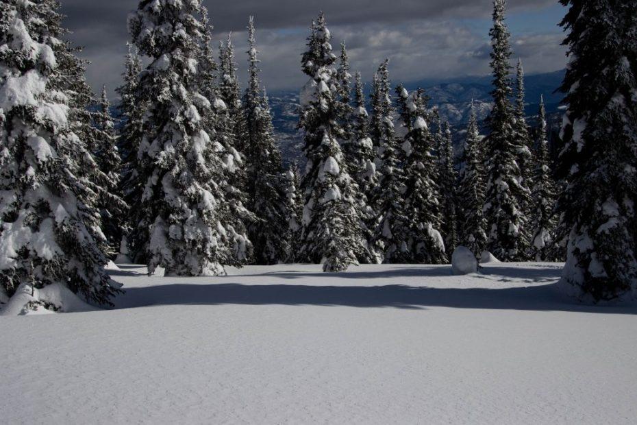 2020 Feb SkiRoadtrip BC OutdoorNorway 37 1030x687 1