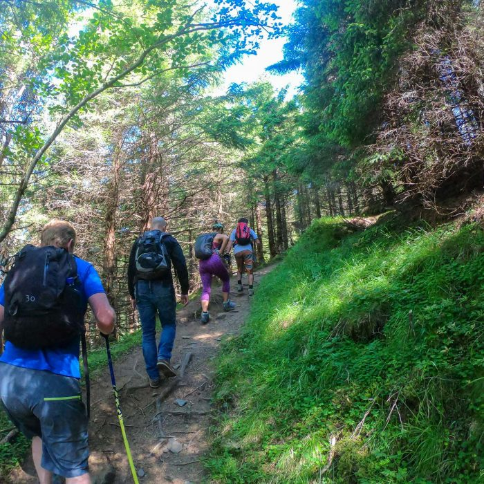 Hiking: An Ecological Perspective