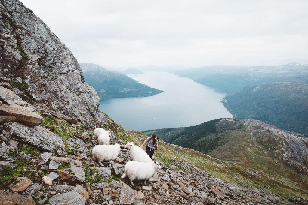 Hike Outdoor Norway 3 1
