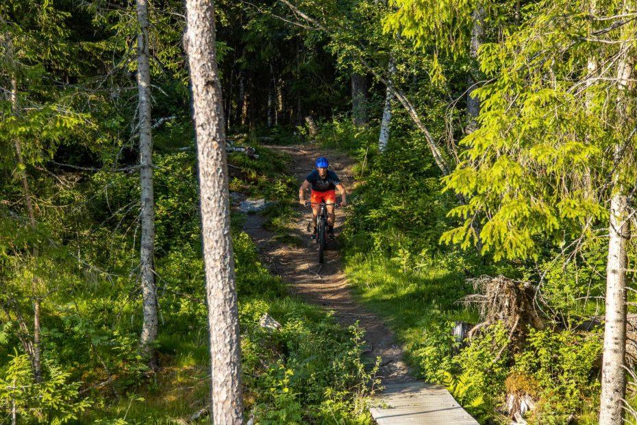 Mountain Bike in Voss