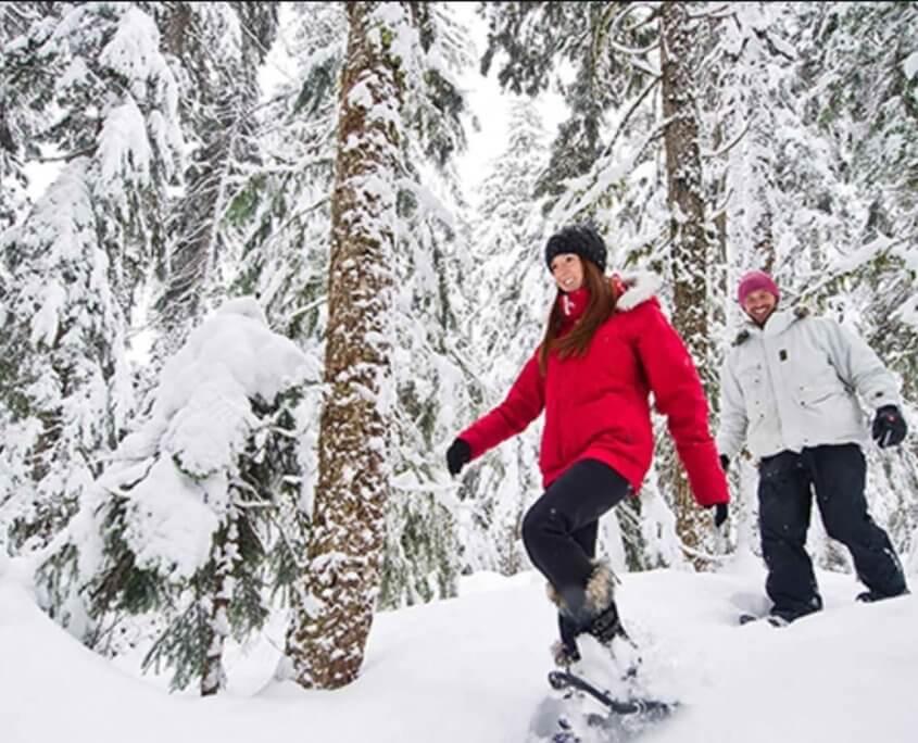 snowshoes tour