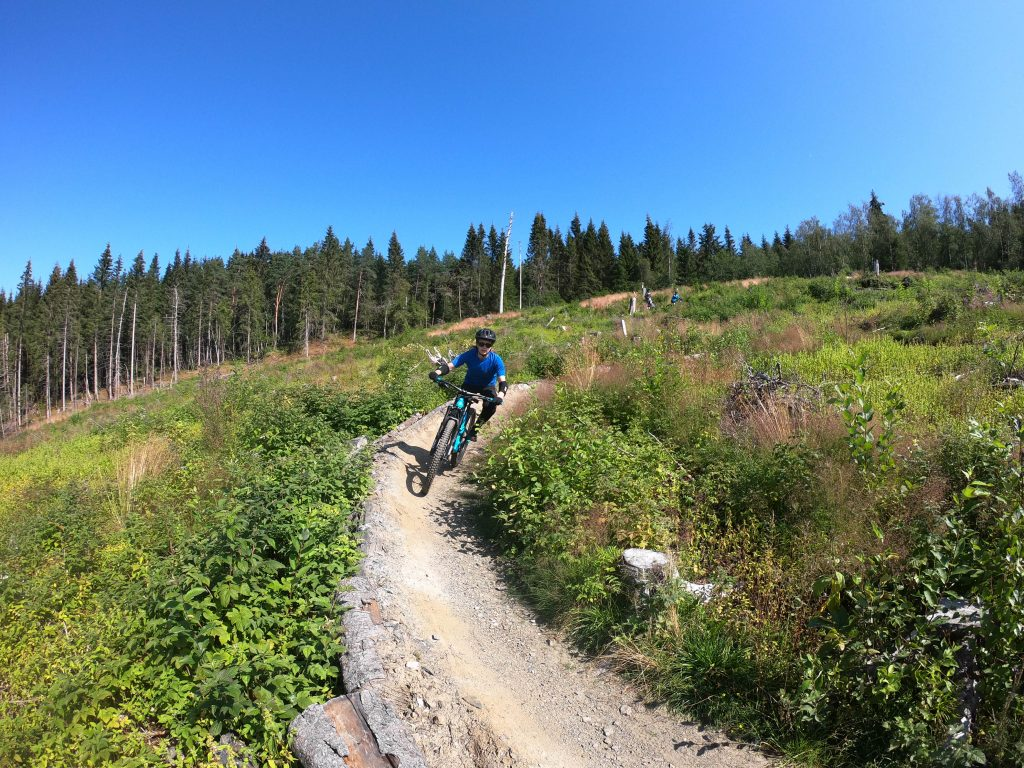 dowhill mountain biking